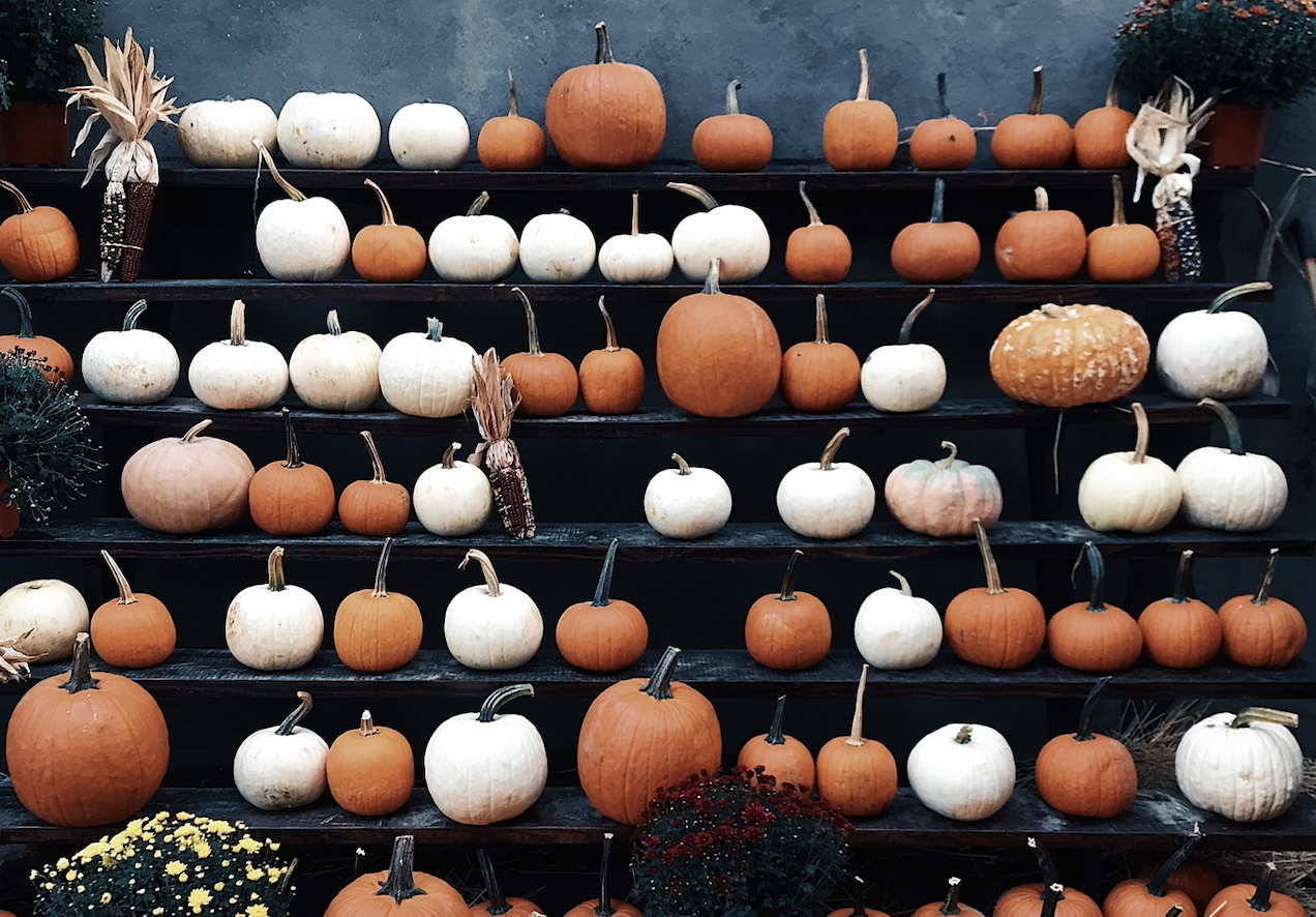 Great Family-Friendly Halloween Events This Weekend